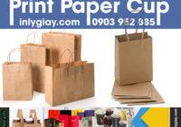 Túi Giấy Kraft vàng (Brown Kraft paper bag)